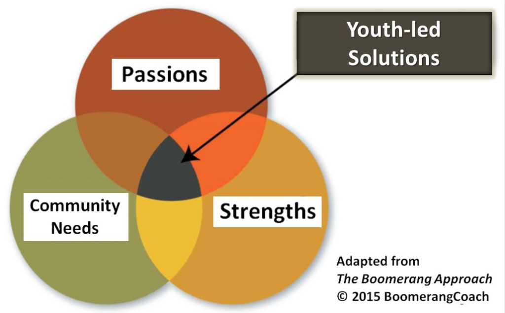 Youth-led Solutions 3 circles